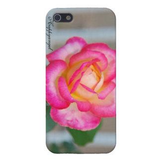 Angelic Rose of Joy iPhone 5 Cases