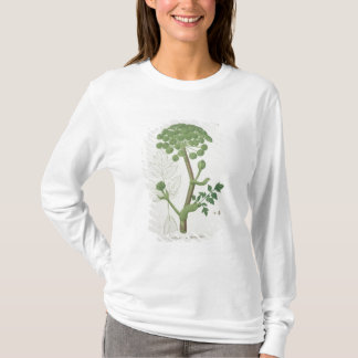 Angelica Archangelica from 'Phytographie Medicale' T-Shirt