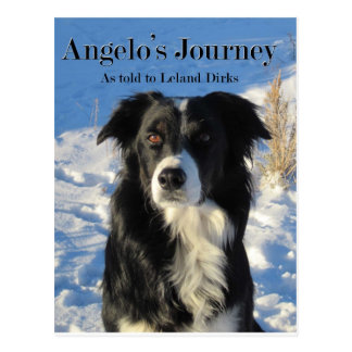 Angelo's Journey Postcard