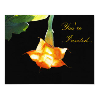 Angel's Trumpet Card