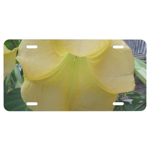 Angels Trumpet Golden Yellow Flower License Plate