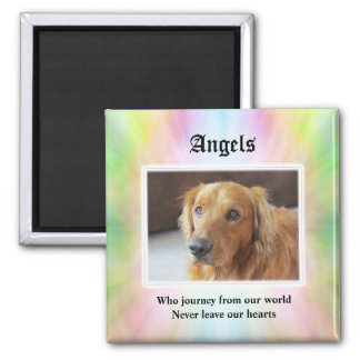 Angels Who Journey Pet Sympathy Magnet