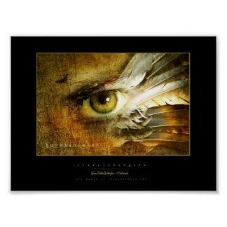 anges et insectes poster