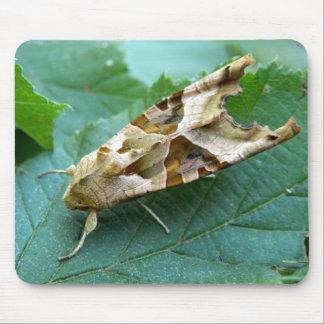 Angle Shades Moth Mouse Mat