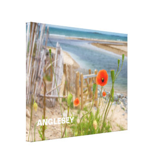 Anglesey Wales Scenic View Beach And Wild Poppies Canvas Print