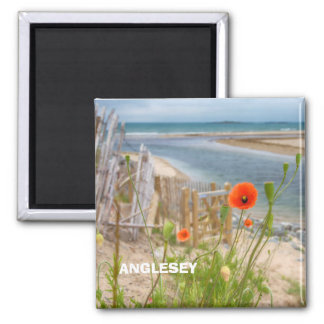 Anglesey Wales Scenic View Beach And Wild Poppies Magnet
