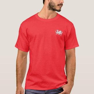 Anglo Saxon Shirt