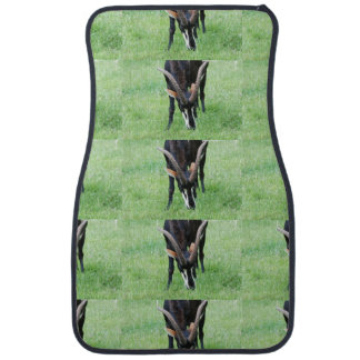 Angola Sable Antelope Floor Mat
