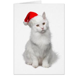 Angora Santa Cat Christmas Card