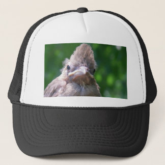 angry baby bird trucker hat