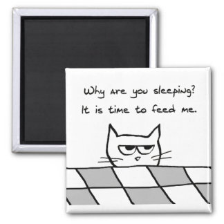 Angry Cat Wants You Out of Bed Square Magnet