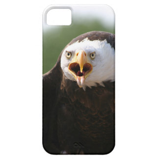 Angry Eagle iPhone 5 Cases