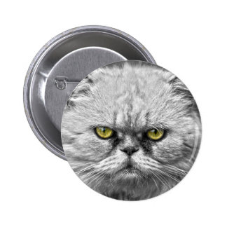 Angry Golden Cat Eyes 2 Inch Round Button