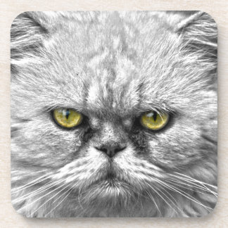 Angry Golden Cat Eyes Coaster
