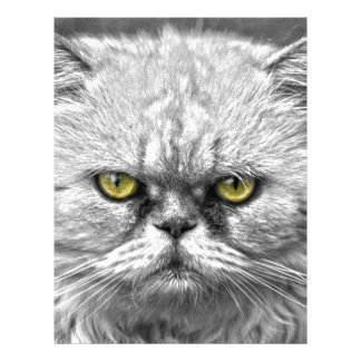 Angry Golden Cat Eyes Customized Letterhead