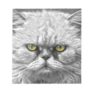Angry Golden Cat Eyes Notepad