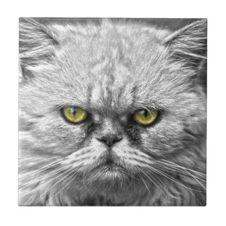 Angry Golden Cat Eyes Tile