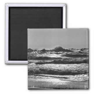 Angry Lake Michigan Grayscale Magnet
