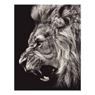 Angry Male Lion Letterhead