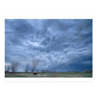 Angry Skies Postcard