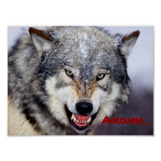 angry wolf poster