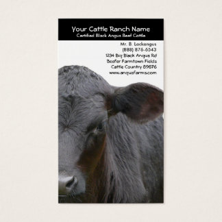 Angus Cow  Closeup Photo for Farmers Business Card