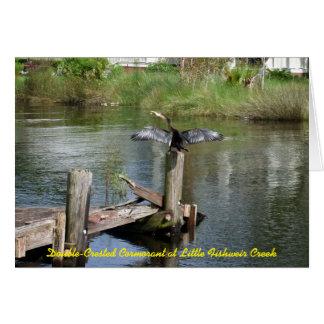 Anhinga at Little Fishweir Creek Card