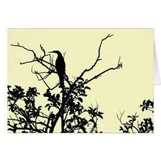 Anhinga Bird Card