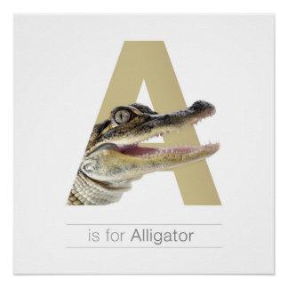 Animal Alphabet Nursery Wall Art. A - Alligator. Perfect Poster