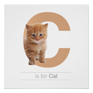 Animal Alphabet Nursery Wall Art. C is for Cat. Perfect Poster
