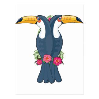 Animal Alphabet Toucan Postcard