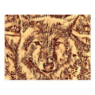 Animal ArtsStudio- amazing wolf Postcard