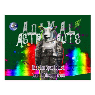 Animal Astronauts Sheep Postcard