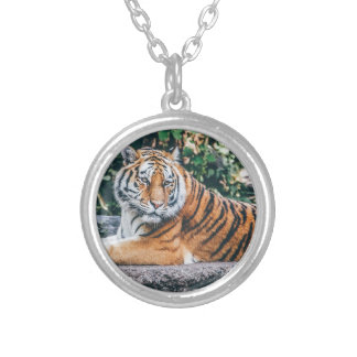 Animal Big Cat Safari Tiger Wild Cat Wildlife Zoo Silver Plated Necklace