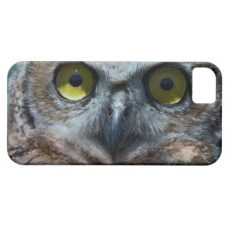 Animal Bird Great Horned Owl peeping in the night iPhone 5 Cover