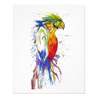 Animal Bird Parrot Full Color Flyer
