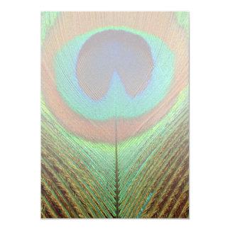 Animal - Bird - Peacock Feather Card