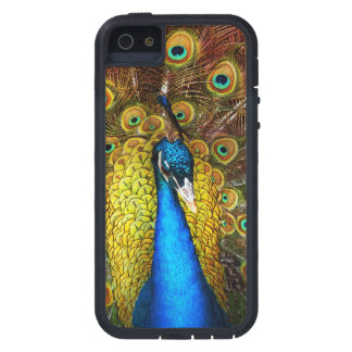 Animal - Bird - Peacock proud Case For The iPhone 5
