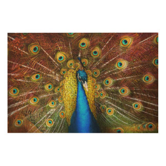 Animal - Bird - Peacock proud Wood Canvases
