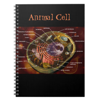 Animal Cell Notebook