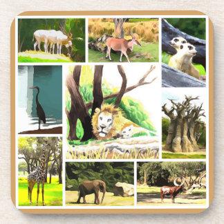 Animal Collage Beverage Coasters