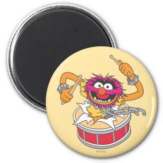Animal Crashing Through Drums 2 Inch Round Magnet