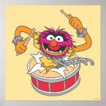 Animal Crashing Through Drums Posters