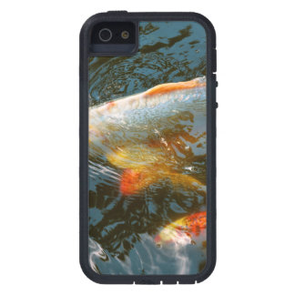 Animal - Fish - Bestow good fortune iPhone 5 Case