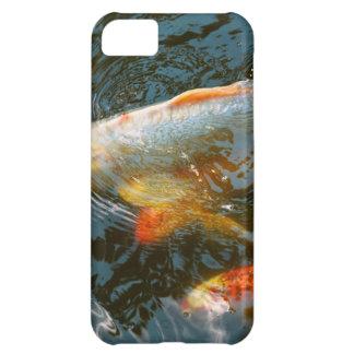 Animal - Fish - Bestow good fortune iPhone 5C Case