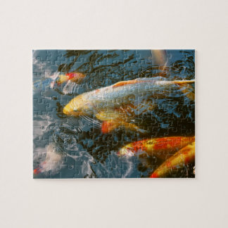 Animal - Fish - Bestow good fortune Jigsaw Puzzle