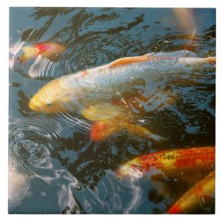 Animal - Fish - Bestow good fortune Tile