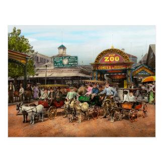 Animal - Goats - Coney Island NY - Kid rides 1904 Postcard