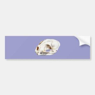 Animal head animal skull bumper sticker