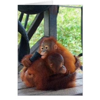 Animal Hugs Orangutan Baby Card